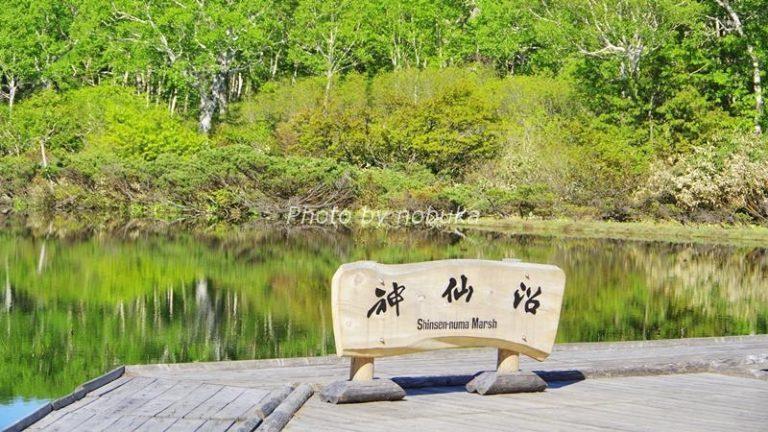 緑の木々が映える神仙沼