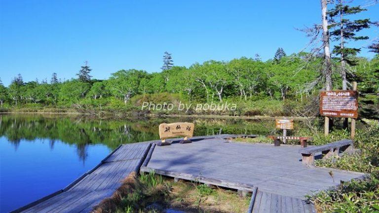 神仙沼の畔のウッドデッキにベンチがあります(phpto by nobuka)