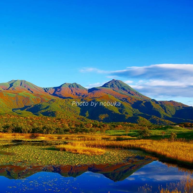秋の知床五湖